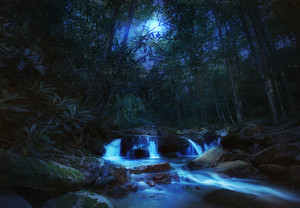A beautiful blue creek under a moonlit sky.