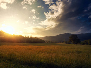 A beautiful sunset over the grassy field