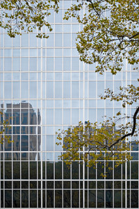 A closeup of a building in the city with reflective glass windows.