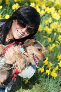 A cute terrier mix breed pup in the arms of a beautiful Spanish woman posing in front of the yellow daffodil flowers in the Spring time.