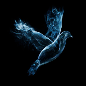 A dove flies on a black background made out of smoke