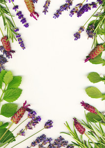 A Frame Made Of Healing Herbs (lavander And Rosemary) On A White Background Isolated