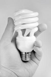 A hand holding a compact fluorescent light bulb.