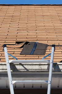 A ladder set up to repair damaged roof shingles.  A section was blown off after a storm with high winds causing a potential leak.