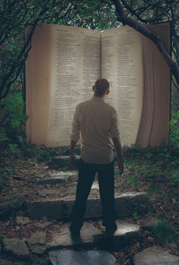 A man comes across and open Bible in the forest
