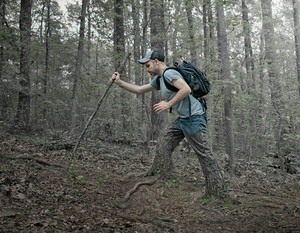 A man walks in the forest as his legs turn into tree stumps