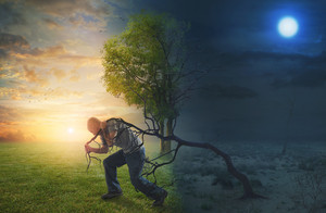 A man walks into the light and pulls an old tree from the darkness.