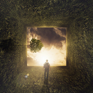 A man walks through a grassy field landscape