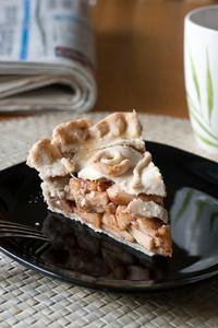 A piece of fresh homemade apple pie.  Shallow depth of field.
