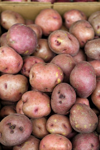 A pile of fresh red potatoes ready for cooking.