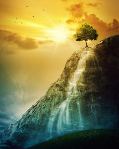 A single tree on top of a mountain with a waterfall.