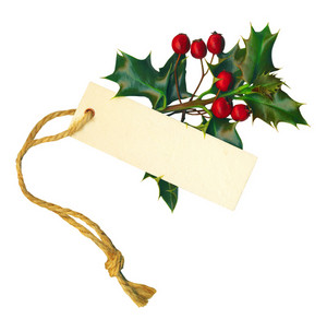 A Sprig Of Holly With A Label Isolated On A White Background. With Clipping Path