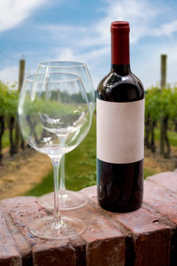 A still life shot of a single wine bottle and a pair of empty glasses in front of a grape wine vineyard.  Shallow depth of field.