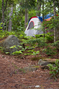 A tent on a heavily wooded camp site in the Adirondacks.