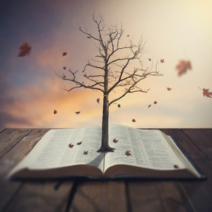 A tree comes out of the pages of an open Bible