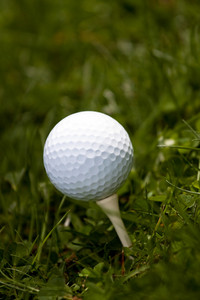 A white golf ball set up on the tee in the green grass.  Shallow depth of field.