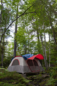 A wide angle panoramic view of a heavily wooded camp site in the Adirondacks.