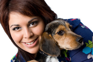 A young girl holding a cute mixed breed beagle yorkie dog isolated on a white background.