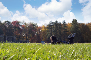 A young student using her laptop computer using the campus wi-fi internet access while laying in the grass on a nice day.