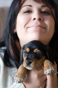 A young woman holding her cute mixed breed puppy - half beagle and half yorkshire terrier.  Shallow depth of field with stronger focus on the puppy.