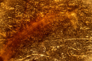 Abstract Color Orange 11 Texture
