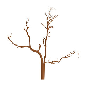 Abstract Dead Tree Shape Art