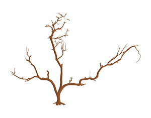 Abstract Dead Tree Vector Art