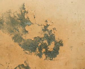 Abstract Grunge Texture 67