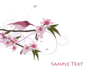 Abstract Illustration With Lots Of Beautiful Flowers