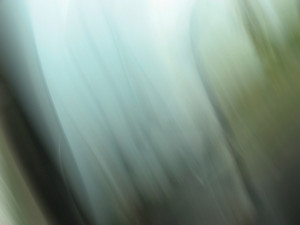 Abstract Light Blurs 41 Texture