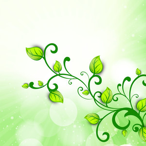 Abstract Nature Background With Branch Of Fresh Green Leaves