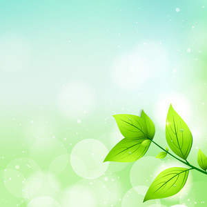 Abstract Nature Background With Fresh Green Leaves
