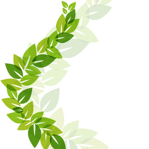 Abstract Nature Background With Green Leaves And Space For Your Text
