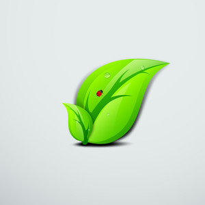 Abstract Nature Background With Small Red Bug And Water Drop On Green Leaves