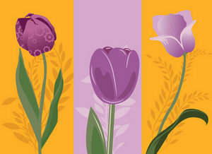 Abstract Spring Illustration With Three Beautiful Tulips