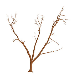 Abstract Vector Dead Tree