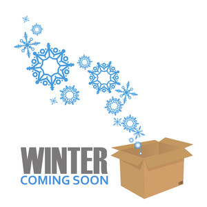Abstract Vector Illustration Of Box And Snowflakes.