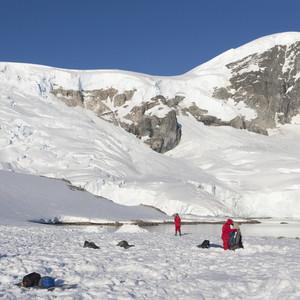 Adventurers on a snowy coast