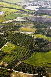 Aerial View At Farm Fields
