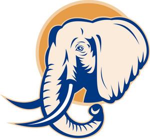 African Bull Elephant Head