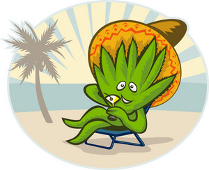 Agave Plant Cartoon Sombrero Hat Martini Beach