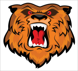 Aggressive And Angry Bear Head Mascot