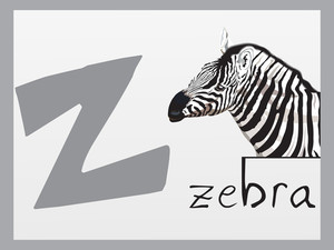 Alphabet Series Z