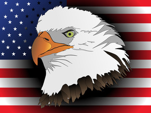 American Eagles Head With Flag