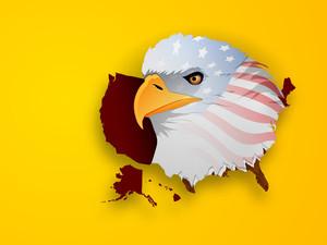 American National Bird