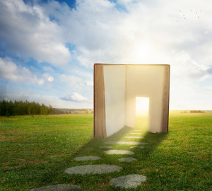 An open book in a field with a doorway in the pages