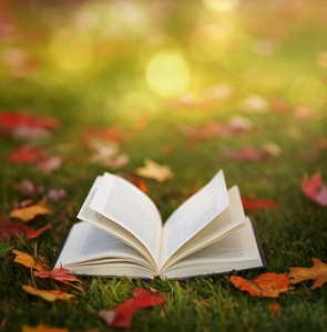 An open book lies in the grass surrounded by colorful autumn leaves