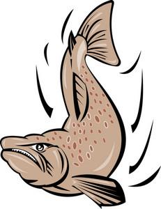 Angry Salmon Fish Jumping Retro