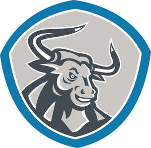Angry Texas Longhorn Bull Shield