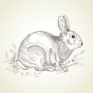 Antique Easter Rabbit